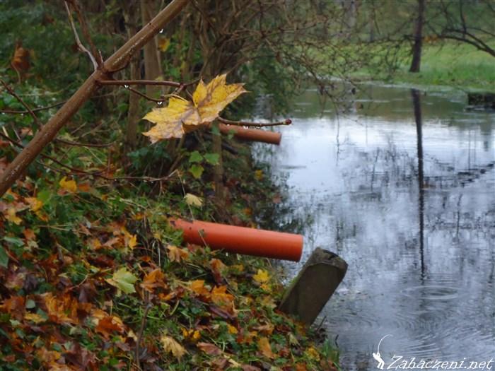 zanieczyszczenie rzeki