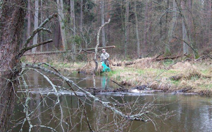 sprzątanie rzeki Pasłęki